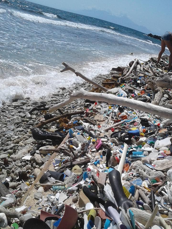 Utila Beach Clean (4)
