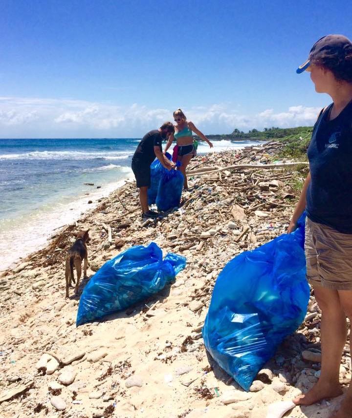 Utila Beach Clean (8)